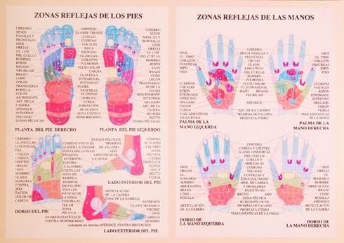 Reflexologia manos y pies- 42 x 30 cm