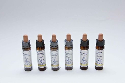 White chestnut x 10 ml