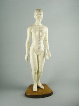 Modelo femenino 48 cm